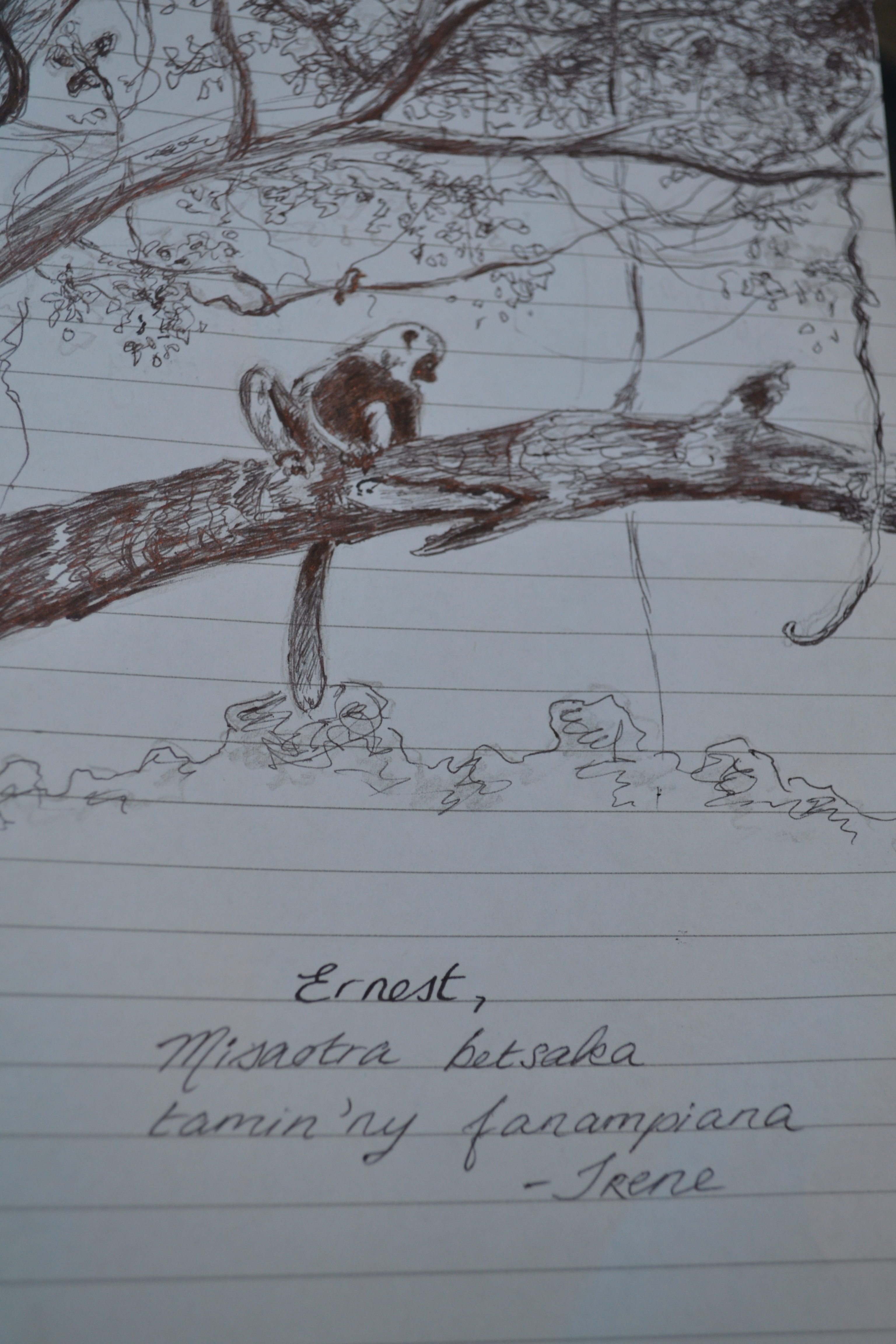 A quick sketch as a parting gift for our incredible guide.