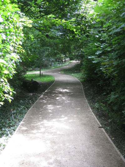The Millennium Oak Walk as covered on a 'Plants and People' field trip.