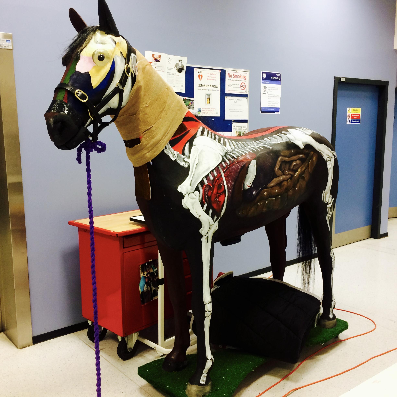 Veterinary Medicine Clinical Skill Lab