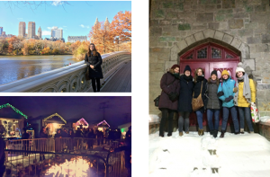 Central Park, a Christmas market and a bunch of us wrapped up against the cold!
