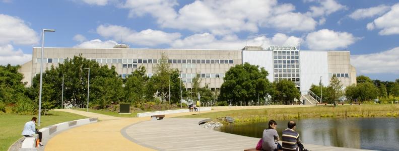 Studying UCD Engineering