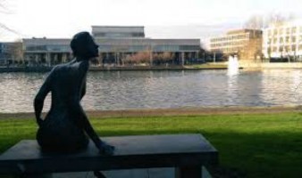 Exploring your Horizons in UCD