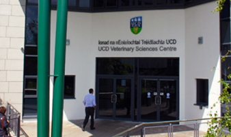 Studying Veterinary Medicine in UCD
