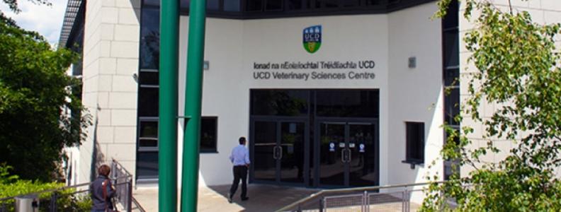 Studying Veterinary Medicine in UCD