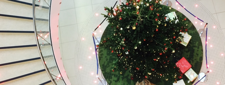 *WARNING contains graphic UCD Christmas cheer*