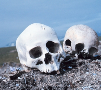 An Introduction to Forensic Anthropology
