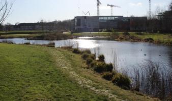 Hidden UCD Gems (and Lakes)