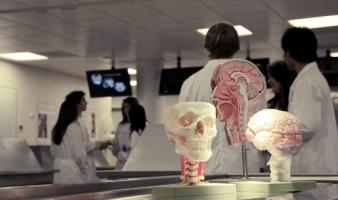 Deciding to Study Medicine in UCD