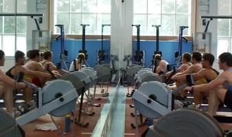 Studying UCD Sport & Performance