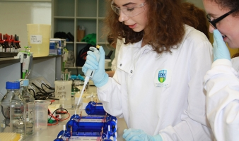 UCD Summer School – The best type of Summer School