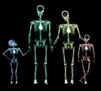 Why choose radiography in UCD?