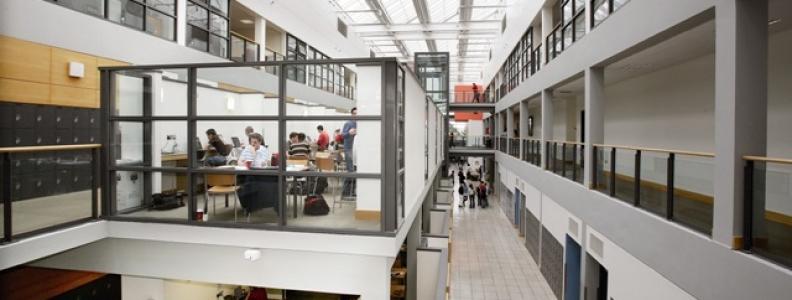 Why I Chose Commerce at UCD
