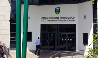 Reasons to study Veterinary Medicine in UCD
