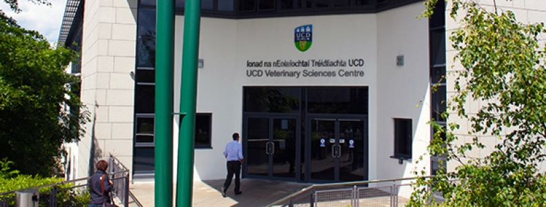 Reasons to study Veterinary Medicine in UCD